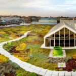 Fall In Love With Green Roofs